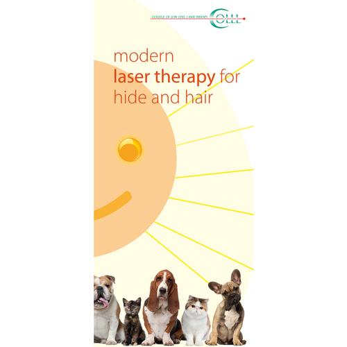 Flyer Laser Therapy and Laser Acupuncture Vet Small animals, EN, 1018607, Модели